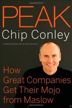 Peak: How Great Companies Get Their Mojo from Maslow by Chip Conley http://www.amazon.com/dp/0787988618/ref=cm_sw_r_pi_dp_Fof7tb0BZTW6Z