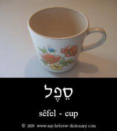 Cup - sefel.
