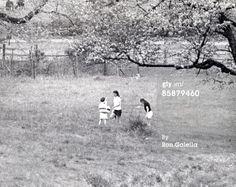 News Photo: Jackie Onassis Caroline Kennedy and John F Kennedy picnicking on their estate in Gladstone, NJ
