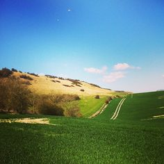 *South Downs NP, The South Downs Way NT