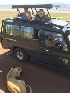 """The continued existence of wildlife and wilderness is important to the quality of life of humans."" #LionessAfrica #LionTanzania with zaratours.co.uk great adventures 2017"