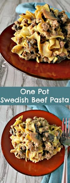 One pot, one pound of beef, and one package of egg noodles makes for a delicious and easy One Pot Swedish Beef Pasta that your family will love.
