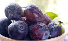Plum Crazy! 8 Health Benefits and Fascinating Facts