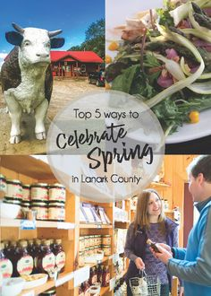 Spring shoots and Local roots.discover 5 new ways to celebrate the spring season in beautiful Lanark County, Ontario, Canada. Maple Vinaigrette, Spring Treats, Land Trust, Heritage Museum, The Settlers, Canoe And Kayak, Grass Fed Beef, Spring Sign, Get Outdoors