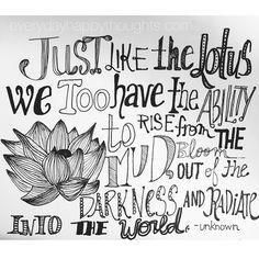 Lotus quote