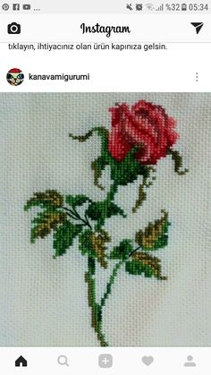 Cross Stitch Flowers, Cross Stitch Patterns, Hand Embroidery, Diy And Crafts, Handmade, Herb, Pink Orchids, Roses, Dots