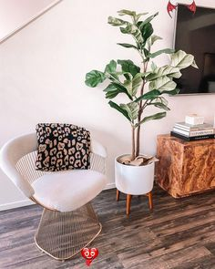 House Reveal: My Current Home Decor | Fashion Jackson  <br> Fig Leaf Tree, Fiddle Leaf Fig Tree, Fig Leaves, Fiddle Fig, Living Room Chairs, Living Room Decor, Living Rooms, Apartment Living, White Ceramic Planter