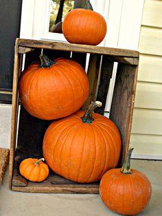 Autumn at Your Front Door