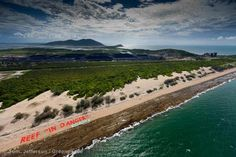 Abbott Point in the Great Barrier Reef World Heritage Site is the proposed site of a coal terminal that would destroy the local ecosystem.