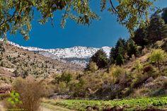 #Akoura mountain with snow peak القمة البيضا لجبل #العاقورة Photo by Khaled Merheb  #WeAreLebanon #Lebanon