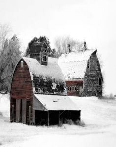 Two old barns covered in snow and so amazingly beautiful!. I had to look twice to appreciate the setting this awesome scene provides!