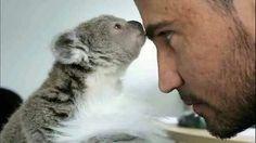 Sooooo cute.... unbearable.... so cute to see