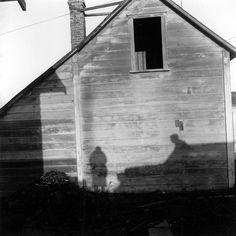 Imogen Cunningham. Self Portrait, Mendocino, 1965