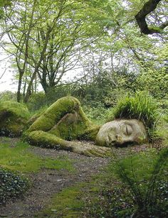 The Lost Gardens of Heligan, Cornualles, England