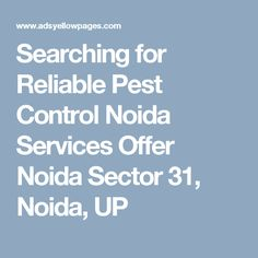 Searching for Reliable Pest Control Noida Services Offer Noida Sector 31, Noida, UP