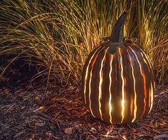 New Indoor Outdoor Fall Tall Big Pumpkin Luminary Garden Patio Yard Home Decor