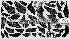 wings | ... wings contain bird wings tattoo wings devil wings butterfly wings