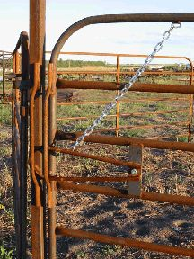 Plus One Manufacturing and Diamond Steel Fencing Farm Gate, Farm Fence, Fence Gate, Fencing, Cattle Gate, Goat Fence, Cattle Corrals, Pipe Fence, Country Fences