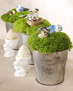 birds & moss centerpieces