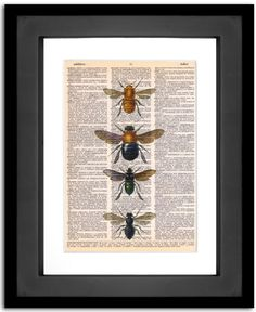 4 Bees - printed on Upcycled Vintage Dictionary Paper - 8x10.5  We need this print.