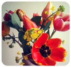 Spring tulips from the farmers market- love fresh flowers in my house