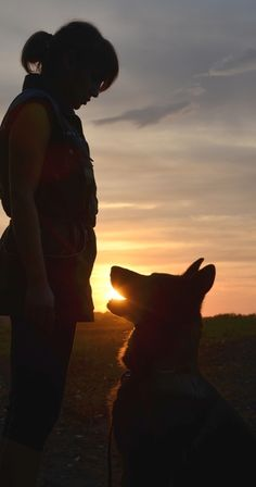 """lit by the gold of a sunset  """"my mood, my life, my time, my dog..."""" - our contestants photo from DOG PHOTOGRAPHY CONTEST. Support our contestants!"""
