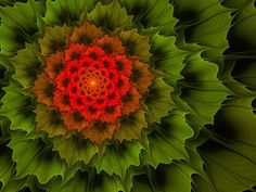 Exotic plant by ~mahaon