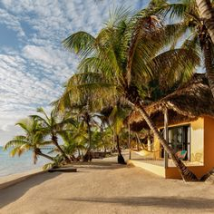 """WANT Les Essentiels founders revamp Matachica resort as """"redefined Belizean beach experience"""" - Dr Wong - Emporium of Tings. Hotel Architecture, Amazing Architecture, Belize Resorts, Beachfront Property, Under The Ocean, Surf Shack, Hotel Interiors, Cool Landscapes, Best Location"""