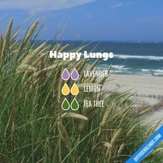 Happy Lungs Essential Oils Diffuser Blend ••• Buy dōTERRA essential oils online at www.mydoterra.com/suzysholar, or contact me suzy.sholar@gmail.com for more info.