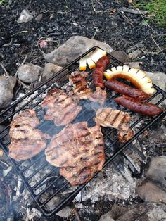 grilled in wild