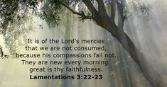 Lamentations - KJV - Bible verse of the day Bible Quotes Images, Inspirational Bible Quotes, Great Is Your Faithfulness, Praying For Others, New Every Morning, Nova Era, Lamentations, Psalm 23, Daily Bible
