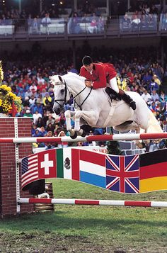 John Whitaker and Milton....I had about 5 Milton DVD's and cried whenever they finished! Such an incredible horse!