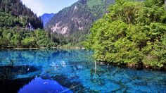 Jiuzhaigou means: Valley of the Nine Villages. The park consists of crystal clear, electric blue, green and purple pools, terraced lakes and waterfalls surrounded by snowy mountains. The giant panda and elusive snow leopard, as well as endemic species such as the Tengmalm's owl, are among rare wildlife that lives in the forests.