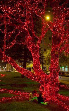 Lisbon Christmas lights, José Adrião. London Square