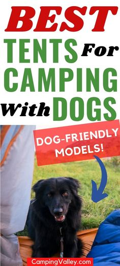 Are you thinking of taking your doggo on a camping trip with you? Take a look at the best camping tents that are great for you and your dog. Best Tents For Camping, Cool Tents, Family Camping, Tent Camping, Outdoor Camping, Outdoor Yoga, Outdoor Life, 10 Person Tent, 4 Season Tent