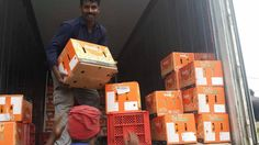 our valencia orange in bangladesh make your business happy☺ http://www.fruitlinkco.com/home/products/citrus/valencia/ #follow #fruitlink #happy #orange #sweet #mandarin #love #fruit #healthy #food #fitness #citrus #family #amazing #life #export #import #nature #friends #packing #art #shipment #organic #murcott #my #product #2017