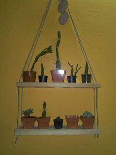 #cactus #macetas #plantas #jardin #maceteros