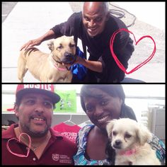 Pookie (top) and Vegas were adopted by two pawsome families today during our Doggone Homes fee-waived adoption weekend!