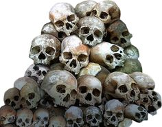 Google Image Result for http://www.officialpsds.com/images/thumbs/Pile-Of-Skulls-psd9211.png