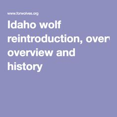 Idaho wolf reintroduction, overview and history