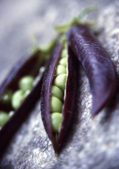 violet pods and green peas
