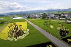 Japanese Rice Field Art - photo from blueforesttiger.blog54.fc2, via Buzzfeed;   The tradition of making rice field art started in Inakadate, a village of 8,000, in the early 1990s.
