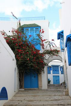 Attractive Tunisia http://www.travelandtransitions.com/destinations/destination-advice/africa/