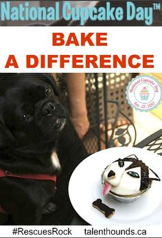 National Cupcake Day 2017 -Bake a Difference: