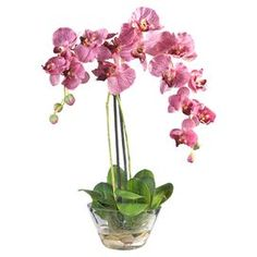 Wedding Flower Arrangements Phalaenopsis in Glass Vase by Nearly Natural - Warm up any room with this flower arrangement. The faux phalaenopsis orchid looks lovely in a round vase filled with artificial water and rocks. From Nearly Natural. Silk Orchids, Phalaenopsis Orchid, Purple Orchids, Silk Floral Arrangements, Artificial Flower Arrangements, Floral Centerpieces, Fake Flowers, Silk Flowers, Fabric Flowers