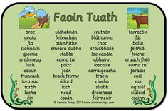 The Primary Education Hub Primary Teaching, Teaching Aids, Primary Education, Irish Gaelic Language, Gaelic Words, 6 Class, Speaking In Tongues, School Hacks, School Ideas