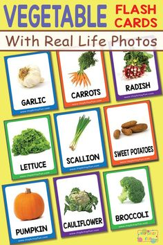 Free Pritnable Vegetable Flashcards with Real Life Photos