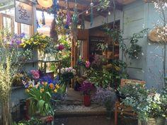神宮前の路地裏にあるレストランeatrip(イートリップ)のお庭にたたずむ小さな小屋がリトルです。天井にはドライフラワー、棚や窓際には花たちが所狭しと並び、個性的な色の花に目を奪われます。