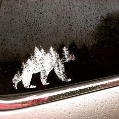 The PNW white bear option looks amazing on tinted windows! Graphic created by Leaf Tee Designs