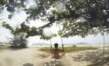 Detox hormonal - ce nu iti spune endocrinologul Detox, Outdoor, Mead, Outdoors, Outdoor Living, Garden